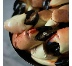FRESH Jumbo Stone Crabs (Per LB)