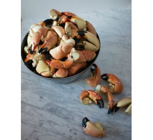 FRESH Medium Stone Crabs (Per LB)