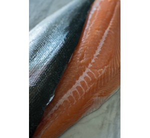 FRESH Atlantic Salmon Fillet (Per LB)
