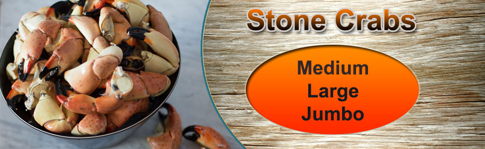 Stone-Crabs-2020