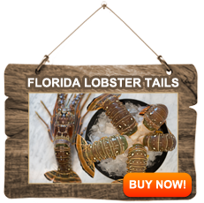 Featured-Lobster